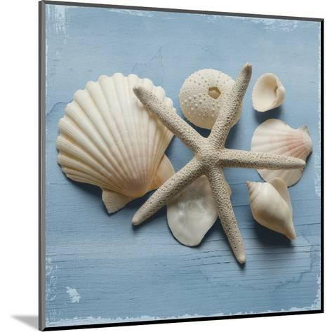 Shell Collection I-Bill Philip-Mounted Art Print