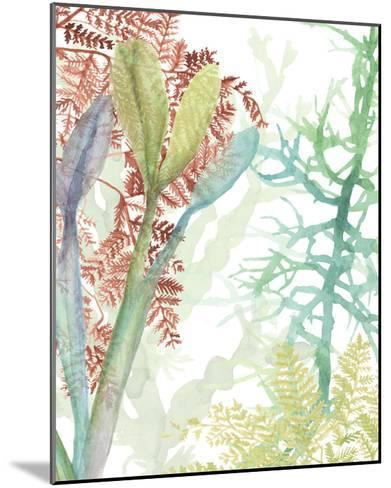 Woven Seaplants II-Naomi McCavitt-Mounted Giclee Print