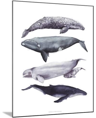 Whale Stack I-Grace Popp-Mounted Art Print