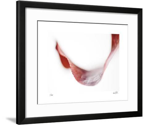 Aloft III-Daniel Sroka-Framed Art Print