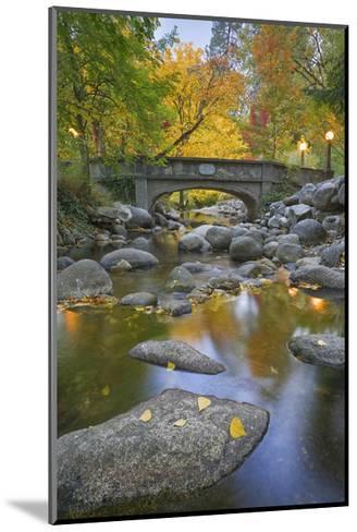 Ashland Creek in Fall-Donald Paulson-Mounted Giclee Print