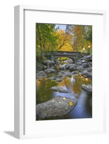Ashland Creek in Fall-Donald Paulson-Framed Art Print