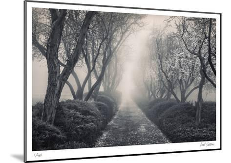 Blossoming Path-Donald Satterlee-Mounted Limited Edition