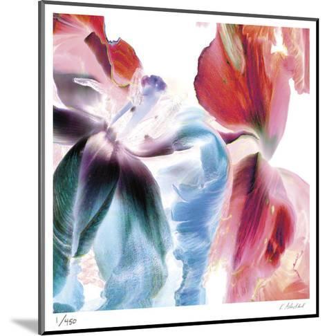 Botanical 4-Kate Blacklock-Mounted Limited Edition