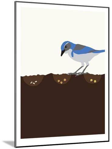 Seeds-Jorey Hurley-Mounted Art Print