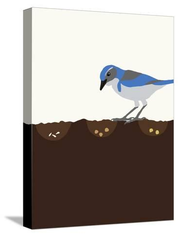 Seeds-Jorey Hurley-Stretched Canvas Print
