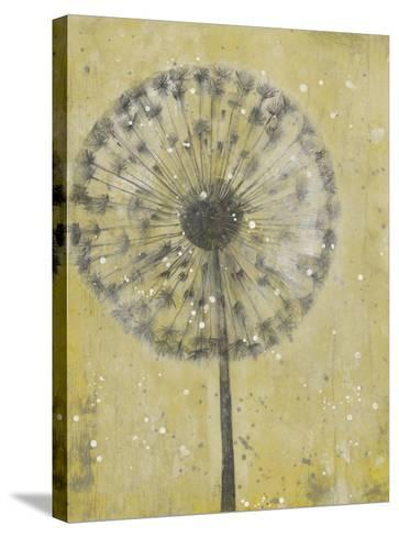 Dandelion Abstract II-Tim O'toole-Stretched Canvas Print