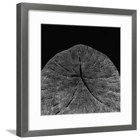 Natural Fragment-Chris Simpson-Framed Art Print