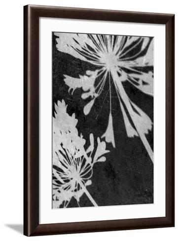 Allium Shadow-Ella Lancaster-Framed Art Print