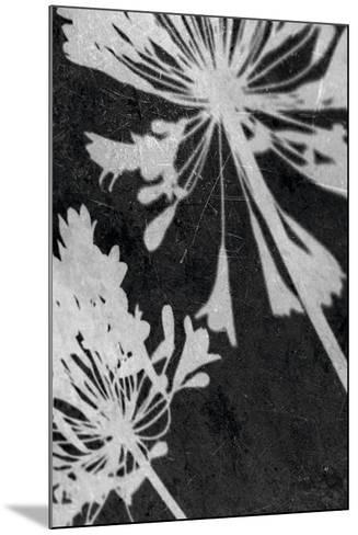Allium Shadow-Ella Lancaster-Mounted Giclee Print