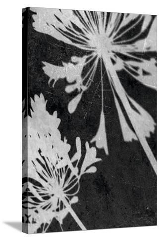 Allium Shadow-Ella Lancaster-Stretched Canvas Print
