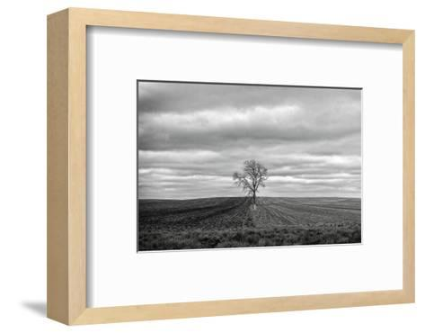 Half Done-Trent Foltz-Framed Art Print