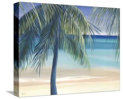 Sea Breeze I-Cathe Hendrick-Stretched Canvas Print