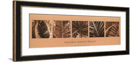 Botanical Collection II-Tony Koukos-Framed Art Print