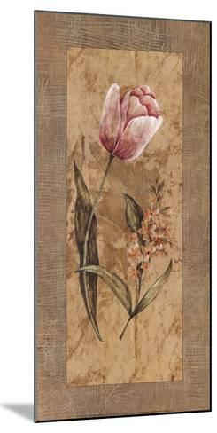 Antique Tulip-Stefania Carlini-Mounted Art Print