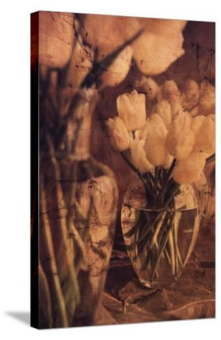 Antique Tulips I-Thea Schrack-Stretched Canvas Print