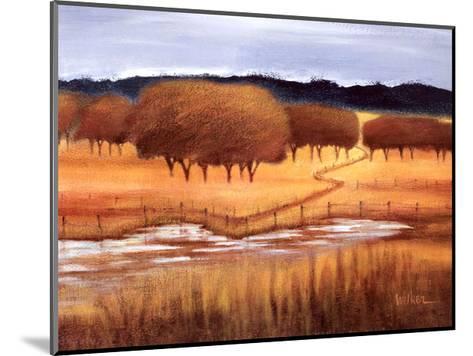 Autumn Reflections-Lynn Welker-Mounted Art Print