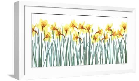Floral Delight I-Jim Wehtje-Framed Art Print
