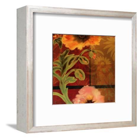 Kaleidoscope II-Tandi Venter-Framed Art Print