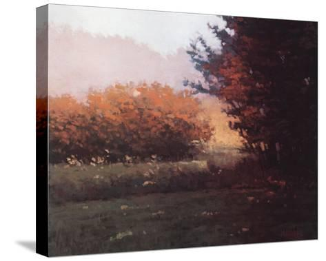 Montlake Hedge-Marcus Bohne-Stretched Canvas Print