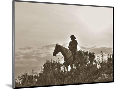Night Watch-Barry Hart-Mounted Art Print