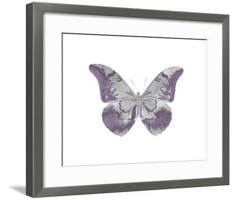 Butterfly in Amethyst I-Julia Bosco-Framed Art Print