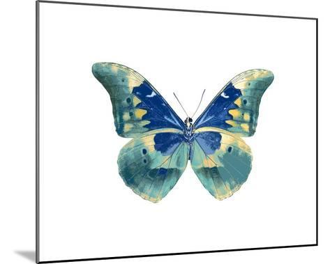 Butterfly in Aqua I-Julia Bosco-Mounted Giclee Print