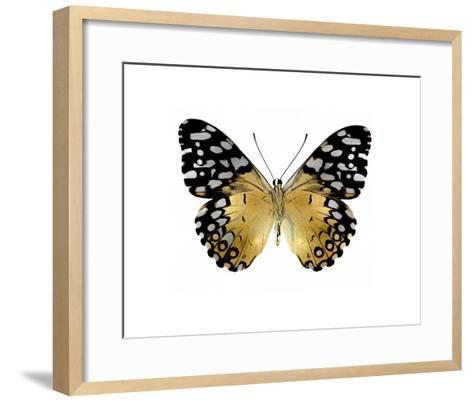 Golden Butterfly IV-Julia Bosco-Framed Art Print
