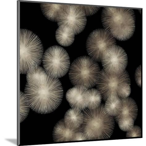 Pewter Sunbursts-Abby Young-Mounted Giclee Print