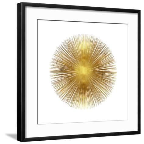 Sunburst I-Abby Young-Framed Art Print