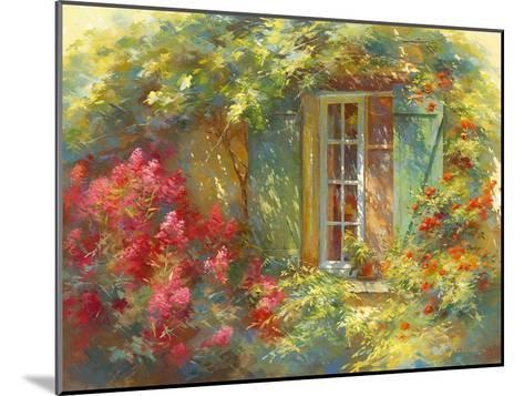 Charme Provençale-Johan Messely-Mounted Giclee Print