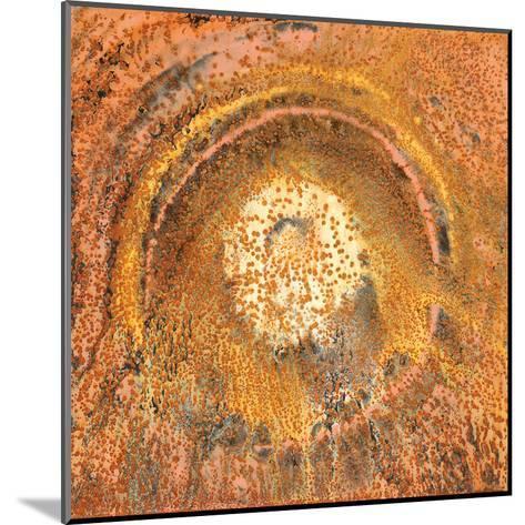 Circle of Tears-Jay Zinn-Mounted Art Print