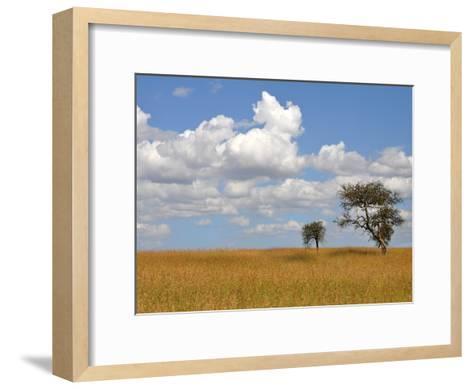 Kenya Tree-Golie Miamee-Framed Art Print