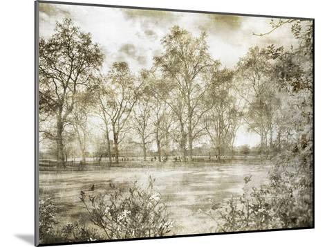 Hyde Park Ii-Golie Miamee-Mounted Art Print