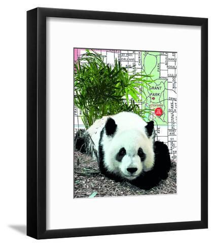 Panda--Framed Art Print