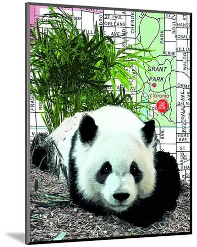 Panda--Mounted Art Print