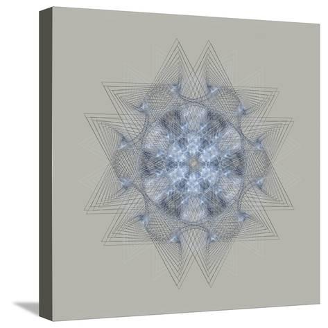 Dynamic IV-Tyler Anderson-Stretched Canvas Print