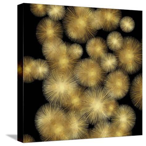 Flourish in Gold-Abby Young-Stretched Canvas Print