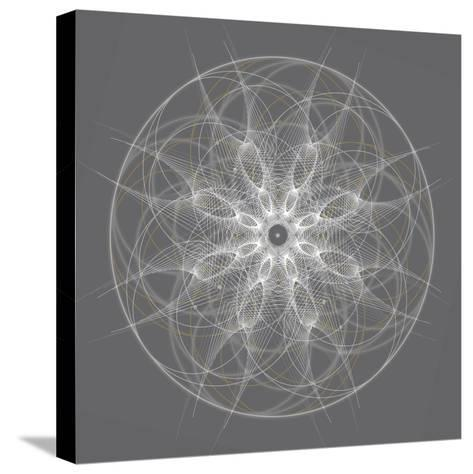 Positive Energy II-Tyler Anderson-Stretched Canvas Print