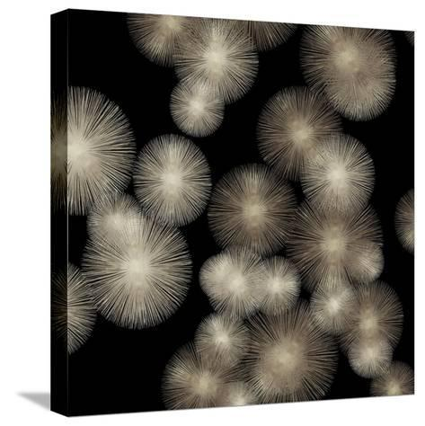 Pewter Sunbursts-Abby Young-Stretched Canvas Print
