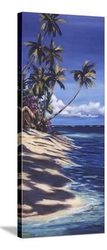 Tropical Retreat II-Dana Ridenour-Stretched Canvas Print