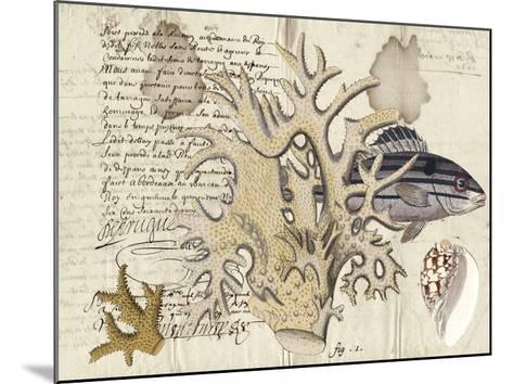 Sealife Journal IV-Vision Studio-Mounted Giclee Print