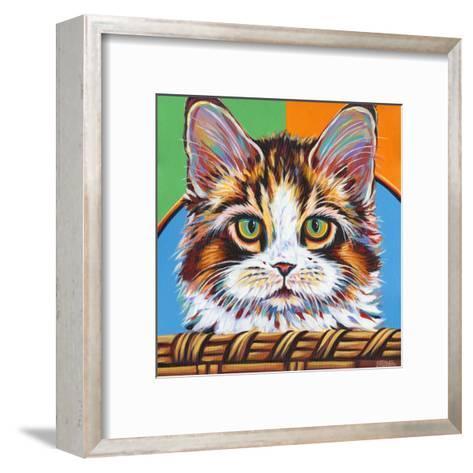 Kitten in Basket II-Carolee Vitaletti-Framed Art Print