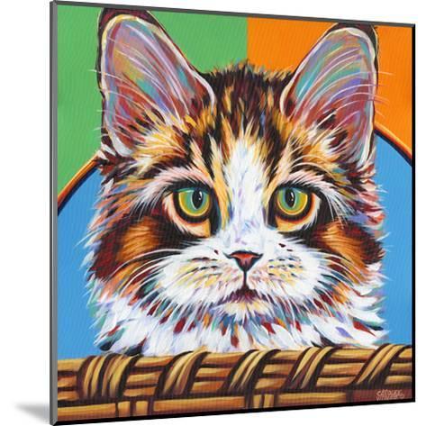 Kitten in Basket II-Carolee Vitaletti-Mounted Art Print