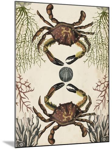Antiquarian Menagerie - Crab-Naomi McCavitt-Mounted Giclee Print