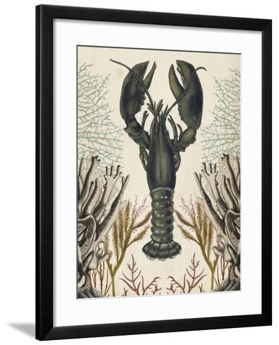 Antiquarian Menagerie - Lobster-Naomi McCavitt-Framed Art Print