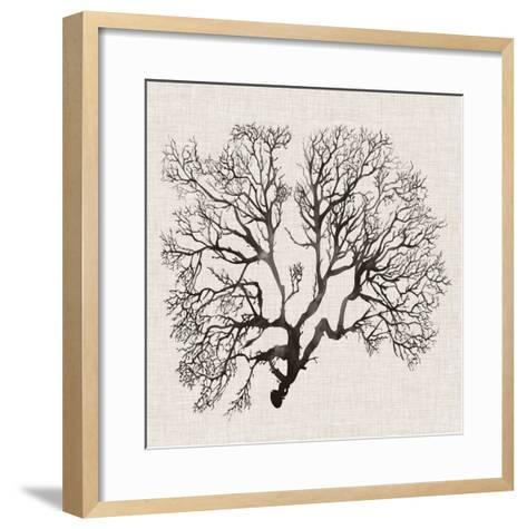 Shadow Sea Fan III-Grace Popp-Framed Art Print