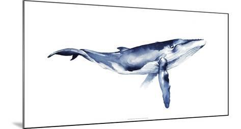 Whale Portrait I-Grace Popp-Mounted Giclee Print
