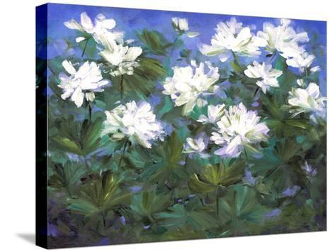 Spring Flowers-Sheila Finch-Stretched Canvas Print