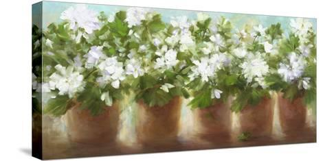 In Full Bloom-Sheila Finch-Stretched Canvas Print